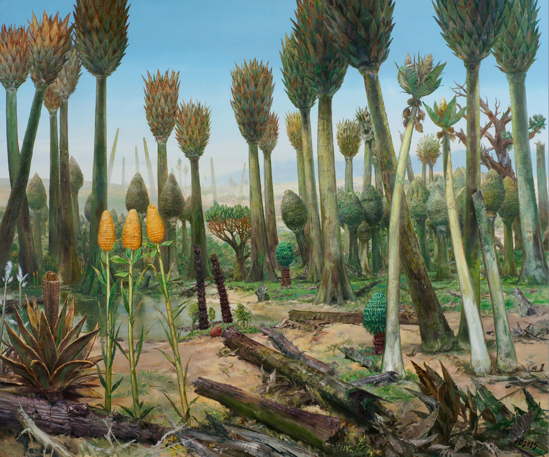 Paul Braunsteiner: Wald
