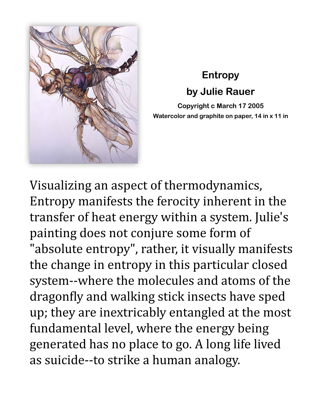 Entropy Description