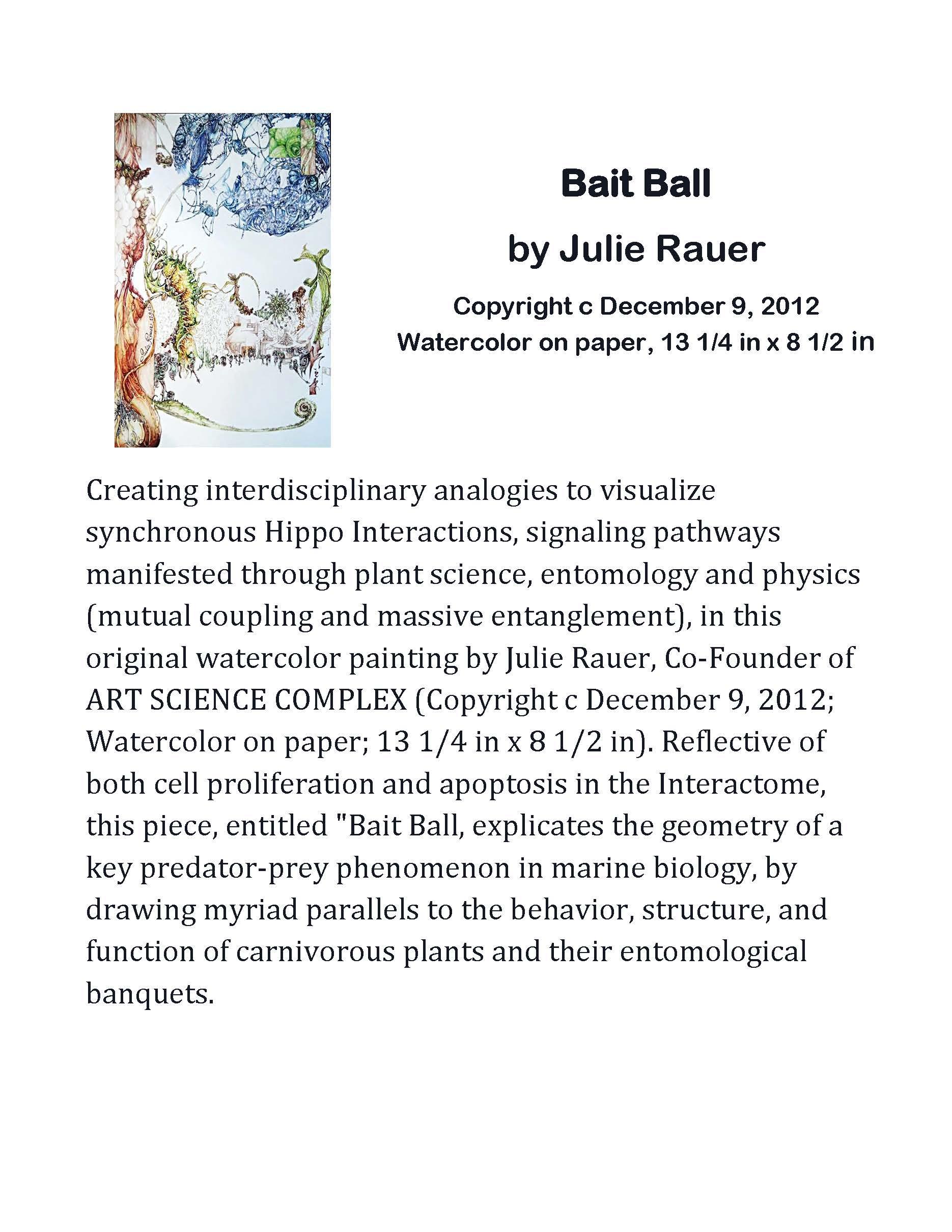 Bait Ball Description