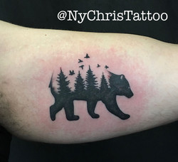 z_bear