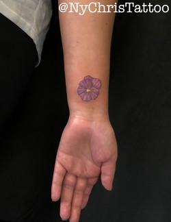 z_flower violet