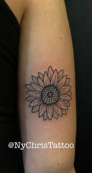 z_flower sunflower.jpg