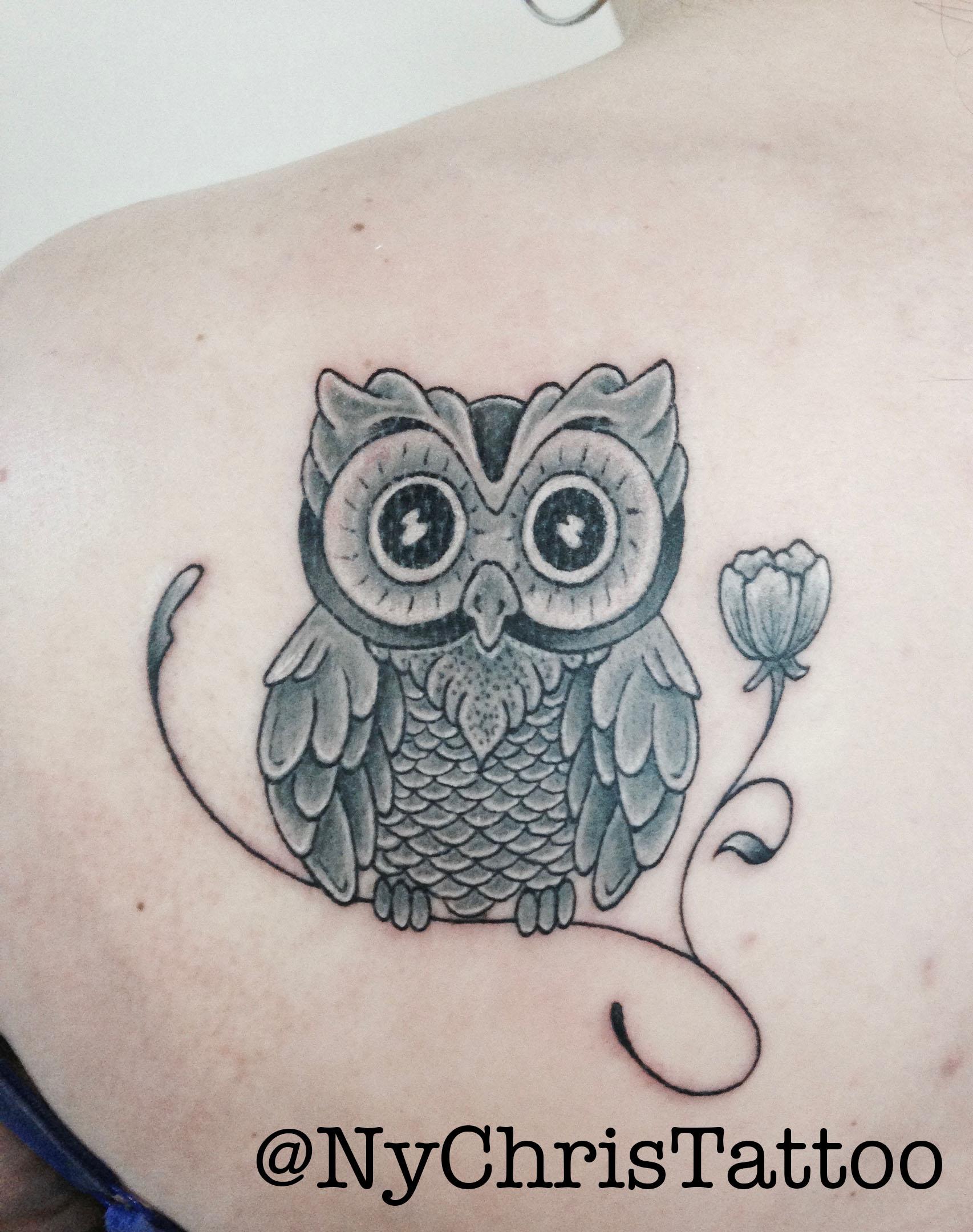 z_owl