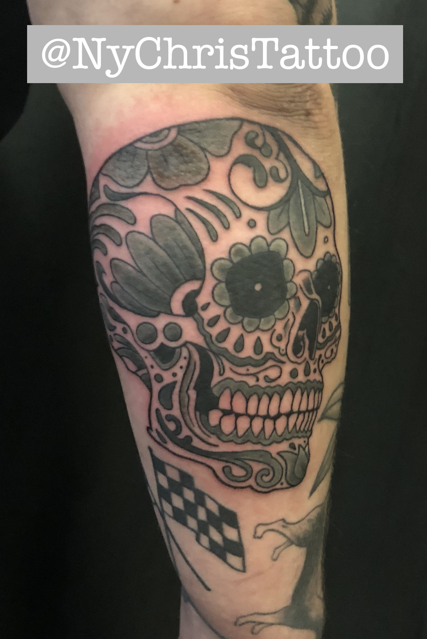 Z_skull mauro