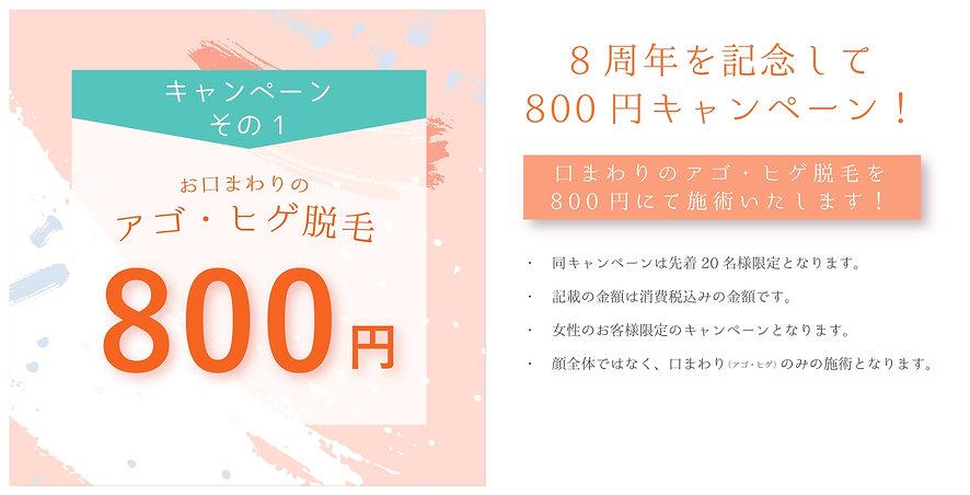 ガーディアン キャンペーンくちまわり アウトラインのコピー_page-0001.