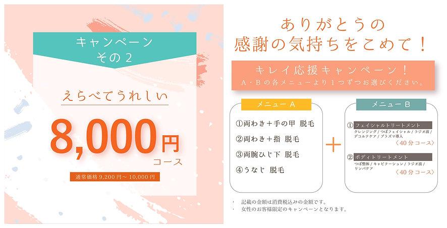 ガーディアン キャンペーン 8000円 アウトラインのコピー_page-0001