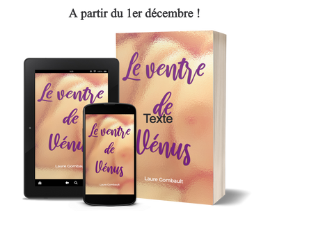 Extrait de mon roman Le ventre de Vénus.