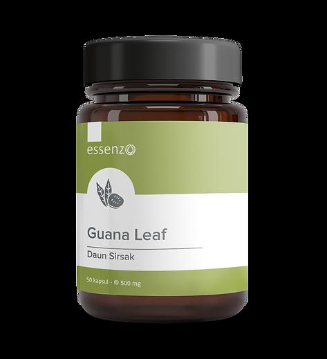 guana leaf.png