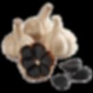 black-garlic_20180506_144711.png