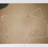 Humpback Whale in a Party Hat, Right Hip 3.25 x 4.25 inches  Instant Positive Film and Thread 2011