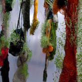 Seoul Lab K1203X,  2010, Installation View, found materials, Korean food plants, 12 x 20 x 40 feet