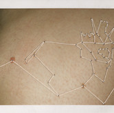 Mountain Goat, Lower Right Back 3.25 x 4.25 inches  Instant Positive Film and Thread 2011