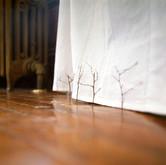 Suspension (Curtain)