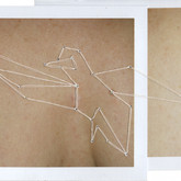 Bird of Paradise, Middle Chest 3.25 x 4.25 inches  Instant Positive Film and Thread 2011