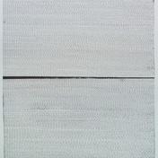 """Untitled Screenprint, letterpress 35"""" H x 25"""" W 2009"""