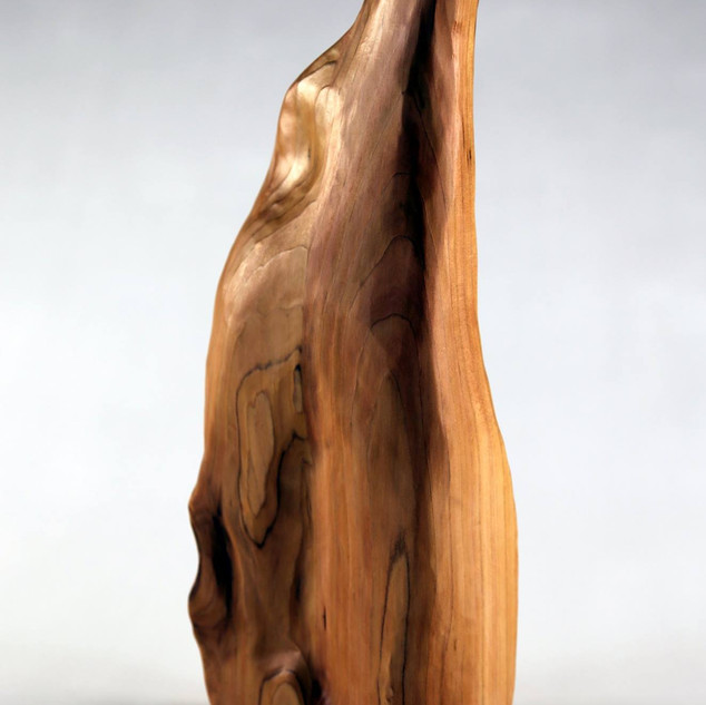 "Sculpture I, Project:  Biomorphic Wood Form Pine 10"" x 7"" x 14"""