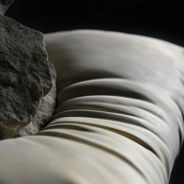 Of a Heaviness, Kisses on a Collarbone, Ribcage Like a Bell (detail)