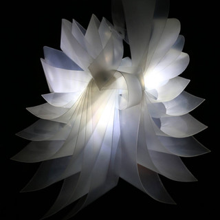 "3D Design, Final Project: LED Illuminated Polypropylene Biomorphic Form Polypropylene Sheet, Aluminum Rivets, LED Lights 24"" x 24"" x 14"""