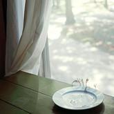 Suspension (Kitchen Table)