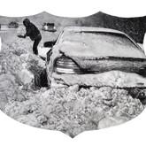 "Snowy Shield, graphite on paper, 18""x22"", 2011"