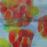 """Priyatama Oil, 48x24"""", 2010"""