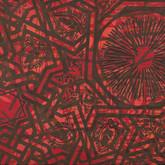"""Accretion acrylic on canvas 30"""" x 50"""" 2010"""