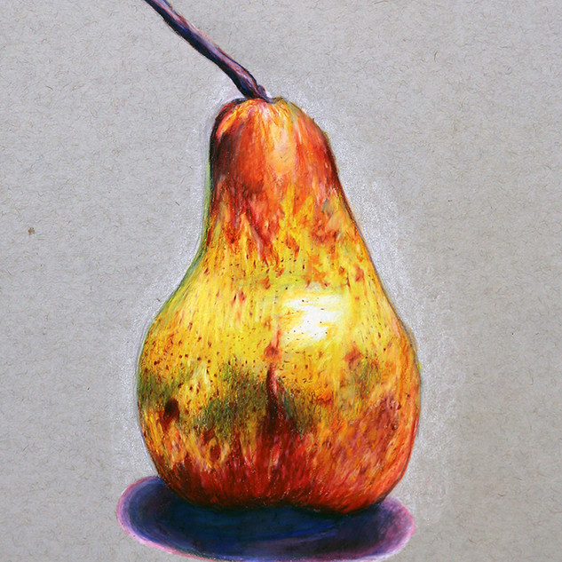 """Drawing II, Project: Local Color, Form and Layering Study (no black allowed) Colored Pencil 9"""" x 12"""""""