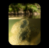 Town Creek: Spherical Rock 2012 INKJET ON PAPER 40x32 inches