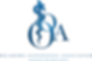 OOA-Logo-larger-OOA.png