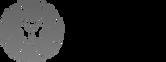 care-logo copy.png