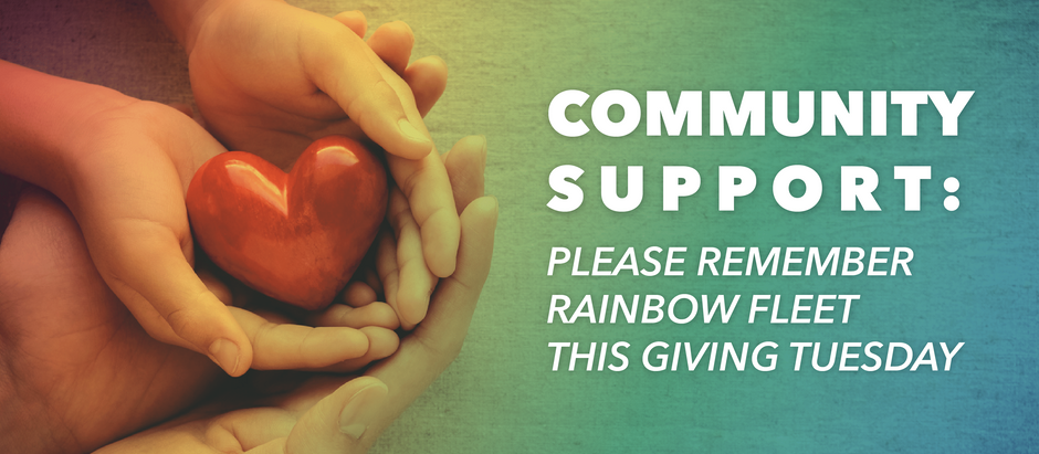 Community support: Please remember Rainbow Fleet this Giving Tuesday