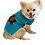 Thumbnail: Sweater Lily- Turquoise