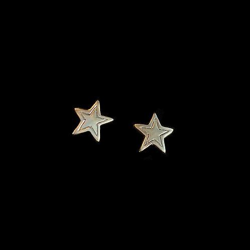Large Star Studded Earrings