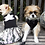 Thumbnail: Disco Lily Dress