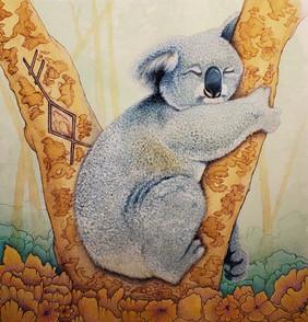 Koala_Finish.jpg