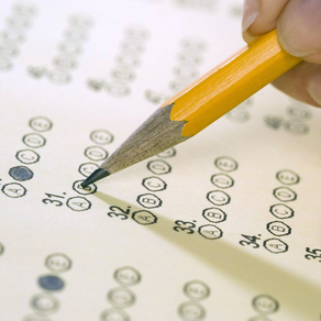 The Challenges of Standardized Tests