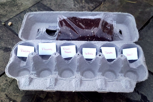 ORGANIC seed starter kits