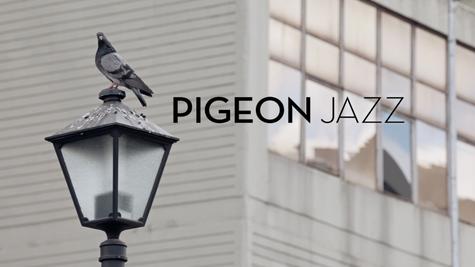 Pigeon Jazz