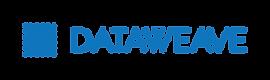 DataWeave-logo-blue-01.png