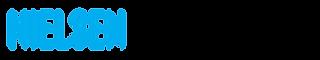 Nielsen Brandbank logo - colour (9).png