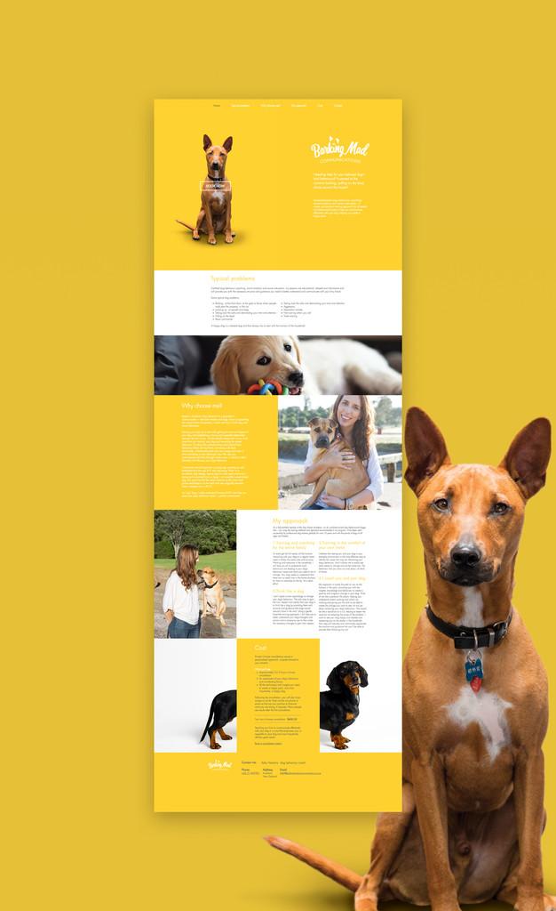 Website-Layout-2.jpg