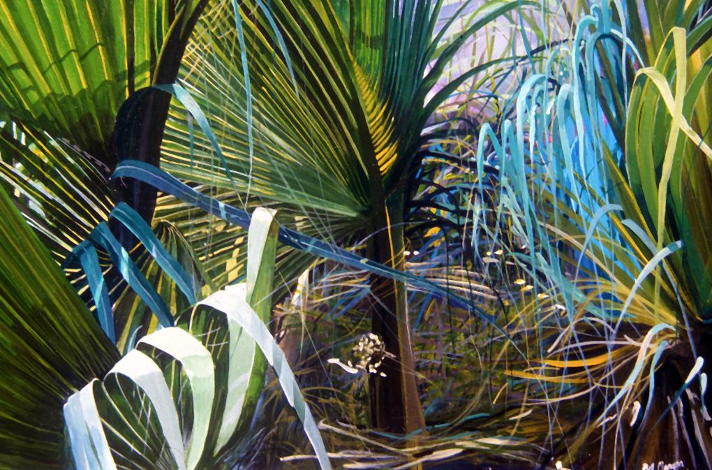 Bahamian undergrowth