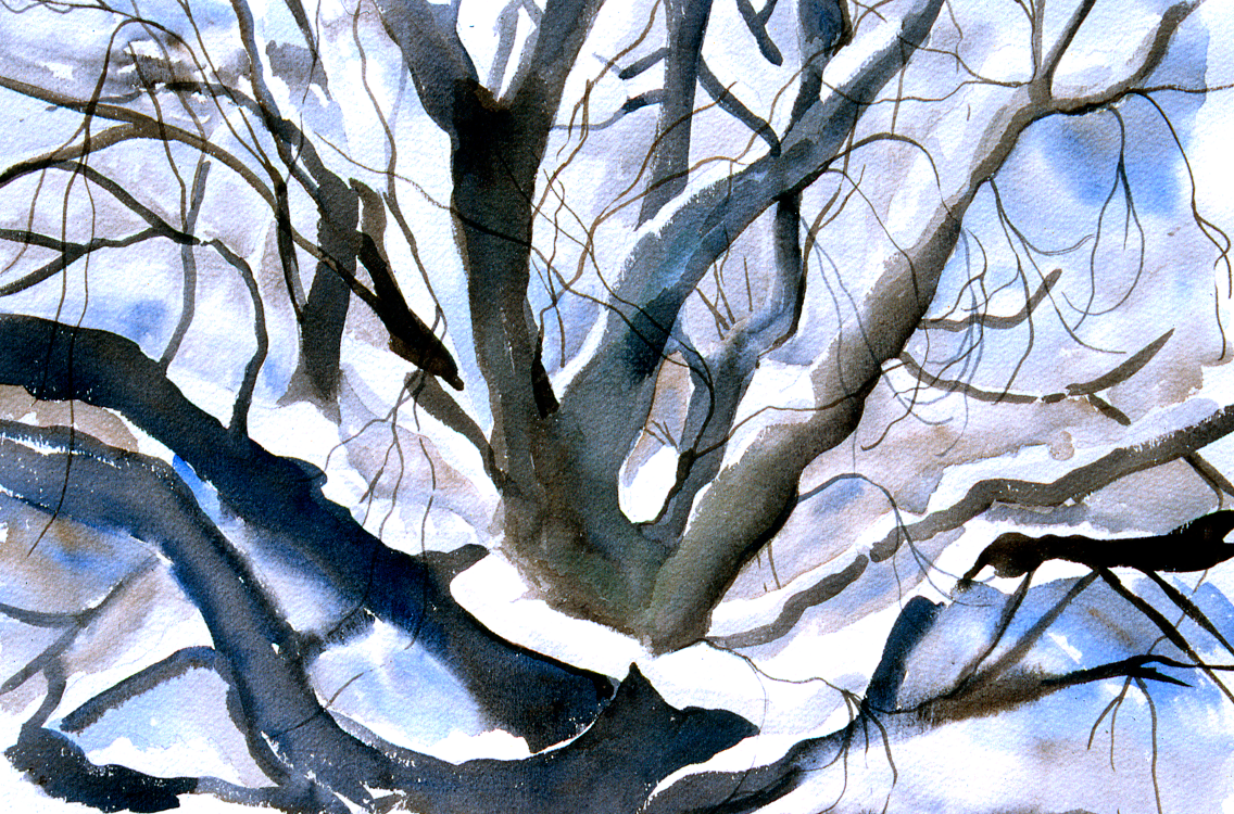 Mid Winter  Tree