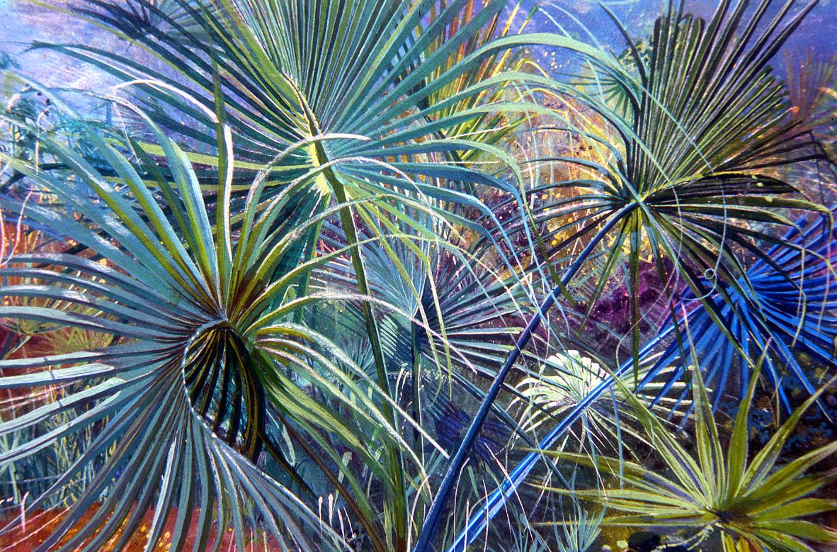 Winding Palms