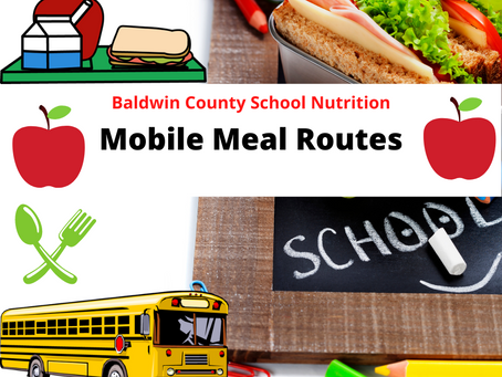 Revised Mobile Meal Routes