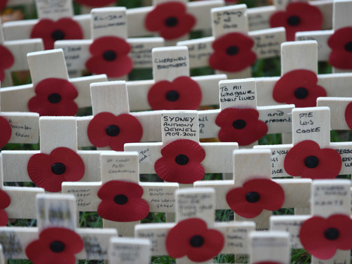 Taxi Charity escorts veterans to Field of Remembrance memorial garden at Westminster Abbey