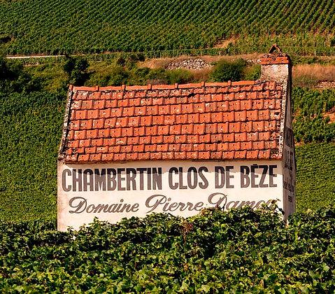 A Night in Burgundy