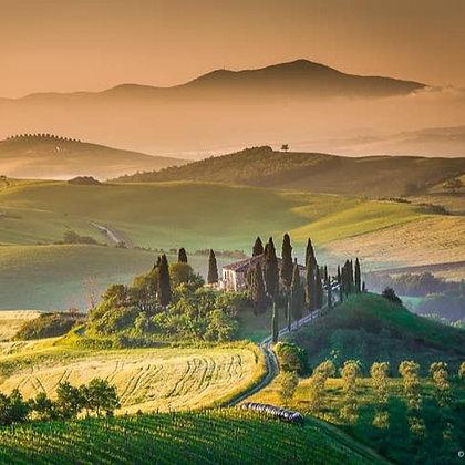 4 Week Wine Evening - Viva Italia