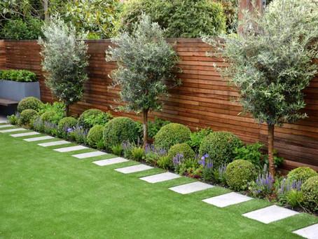7 Landscaping Design Tips For Beginners!