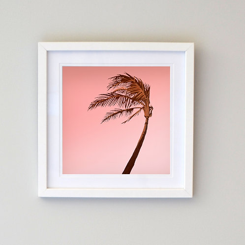 The Tree that Bends Framed Print